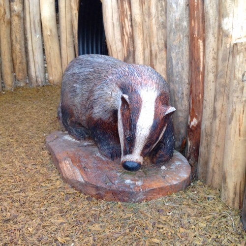 Badger Carving And Fox Hole Farnham Park Rustic Outdoor Play Area 202