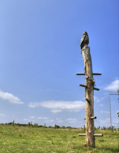Climbing Post Topped With Carving Abberton Reservoir Childrens Outdoor Play Area By Flights Of Fantasy E1481994406849