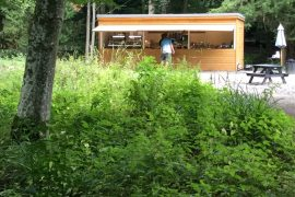 Forest View Wallington Hall Food Hut