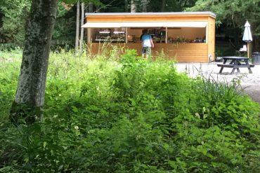 Forest View – Wallington Hall Food Hut