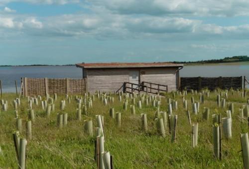 Gwens Bird Hide At Abberton Reservoir For Essex Wildlife Trust Small