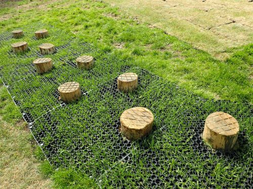 Hop Stones Stepping Logs
