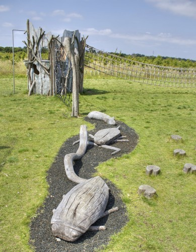 Insect And Snake Carvings Abberton Reservoir Childrens Outdoor Play Area By Flights Of Fantasy