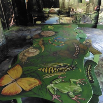Jungle Table At Bristol Zoo By Flights Of Fantasy