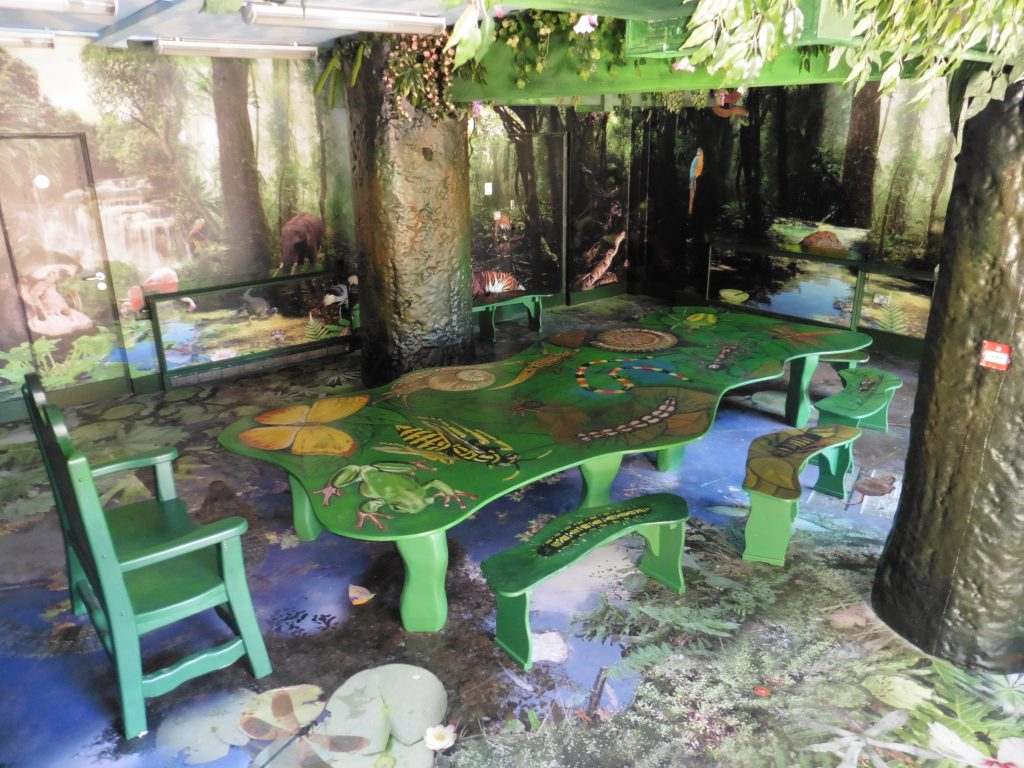 Main Table And Chairs View Bristol Zoo Jungle Themed Seating Party Room Animal Wall Murals