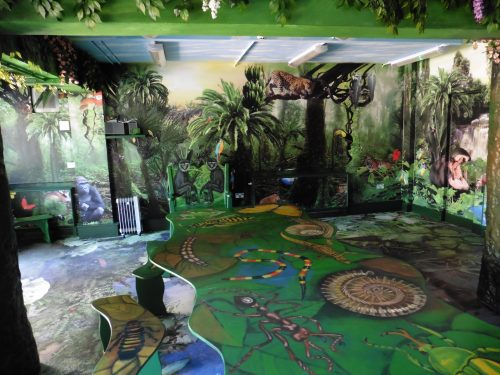 Main View Bristol Zoo Jungle Themed Seating Party Room Animal Wall Murals