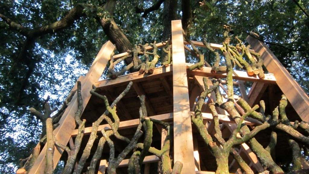 Moseley Old Hall Rustic Forest Tree House Play Area From Below