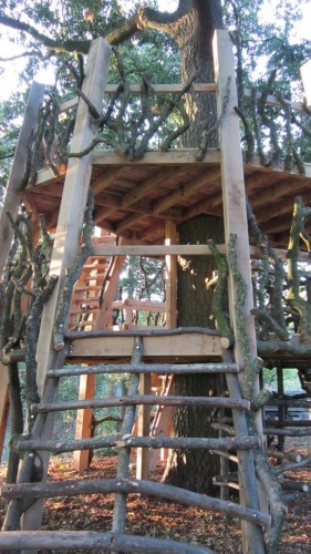 Moseley Old Hall Rustic Forest Tree House Play Area Old Wood Ladder