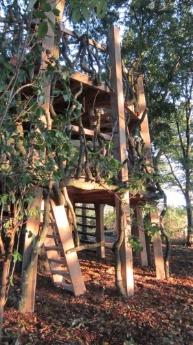 Moseley Old Hall Rustic Forest Tree House Play Area Side View