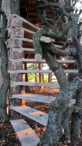 Moseley Old Hall Rustic Forest Tree House Play Area Spiral Ladder