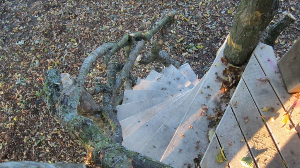 Moseley Old Hall Rustic Forest Tree House Play Area Steps From Above