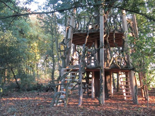 Moseley Old Hall Treehouse
