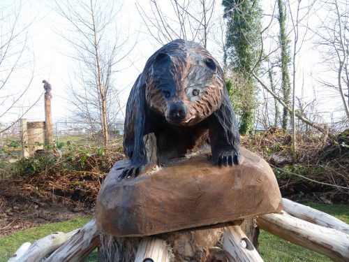 Mounted Badger Carving Wooden Sculpture At Castlewellan By Flights Of Fantasy