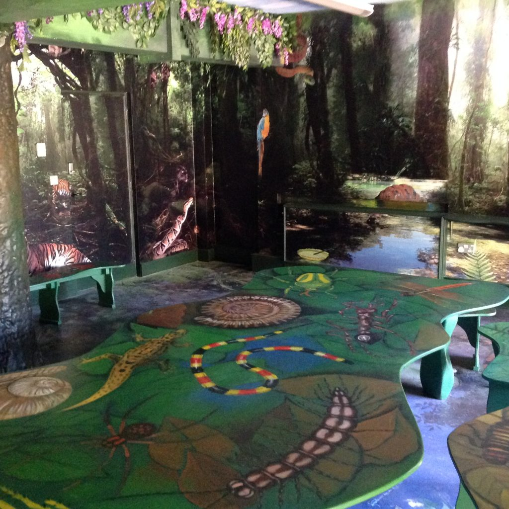 Painted Table Bristol Zoo Jungle Themed Seating Party Room Animal Wall Murals