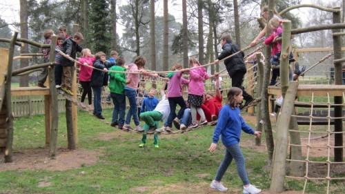 Sandringham Public Wooden Outdoor Childrens Play Area 20