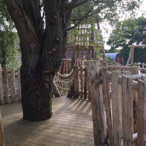 Tree Platform Knockhatch Fort Chestnut Wood Adventure Play Area Square