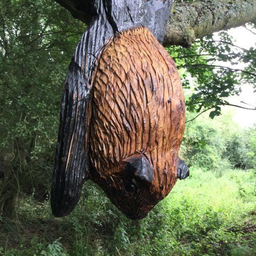 bat carving in tree