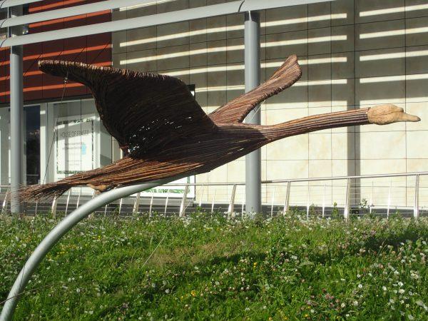 flying swan rushden lakes sculptures