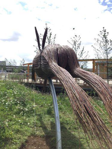 giant hare bottom