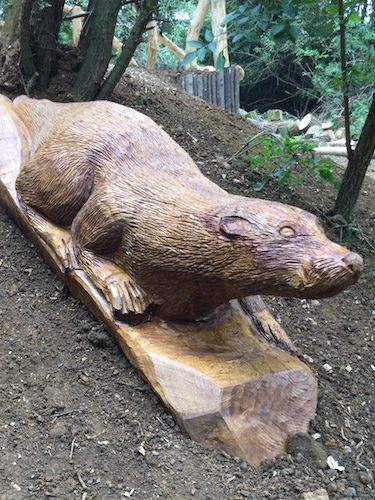otter hill carving wooden sculpture rushden lakes