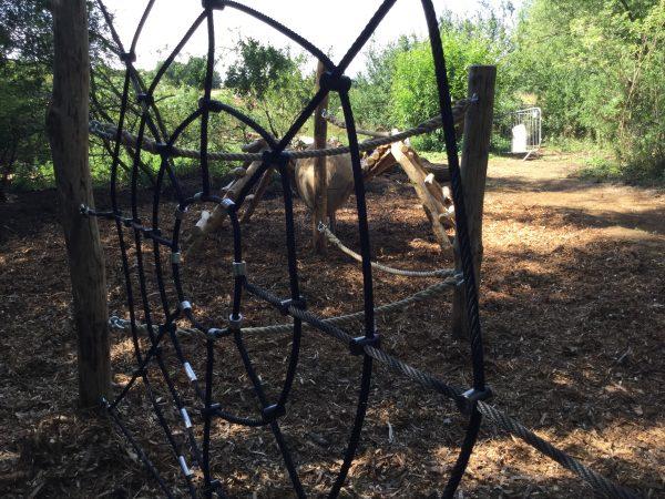 spider web climb net rushden lakes play area 1