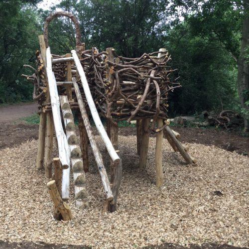 step log to herons nest