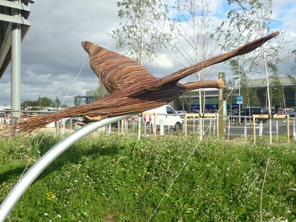 swan flying rear view rushden lakes sculptures